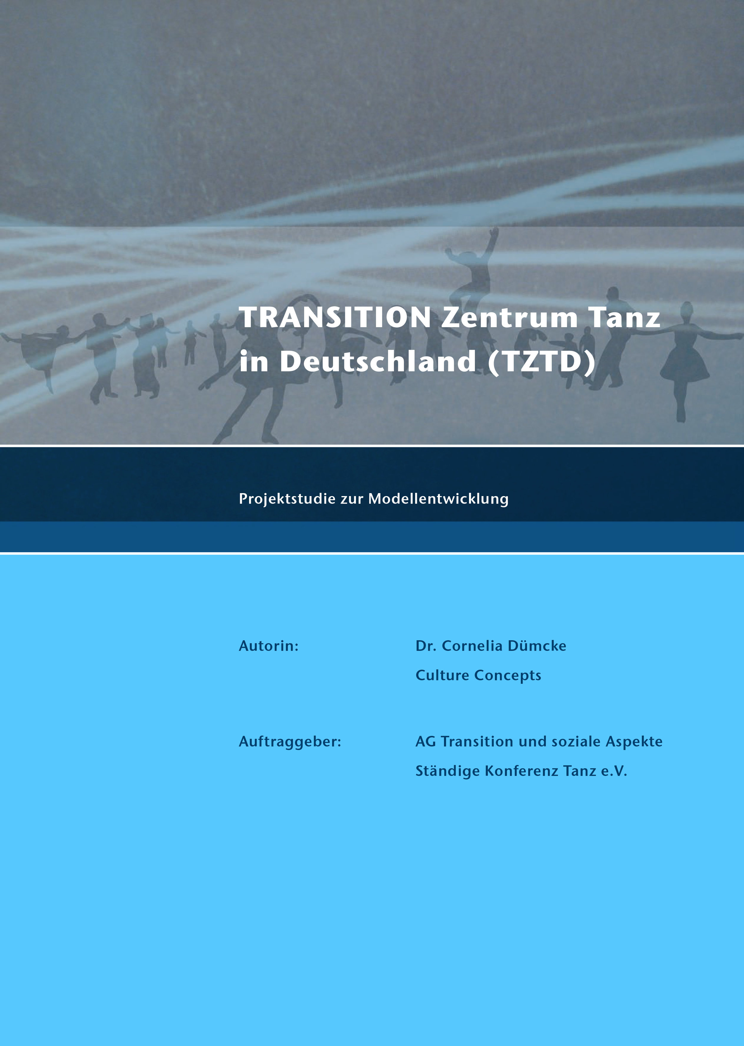 2008_DB_Dümcke_Transition Tanz D Studie_Lang.jpg