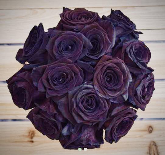 Black roses.jpg