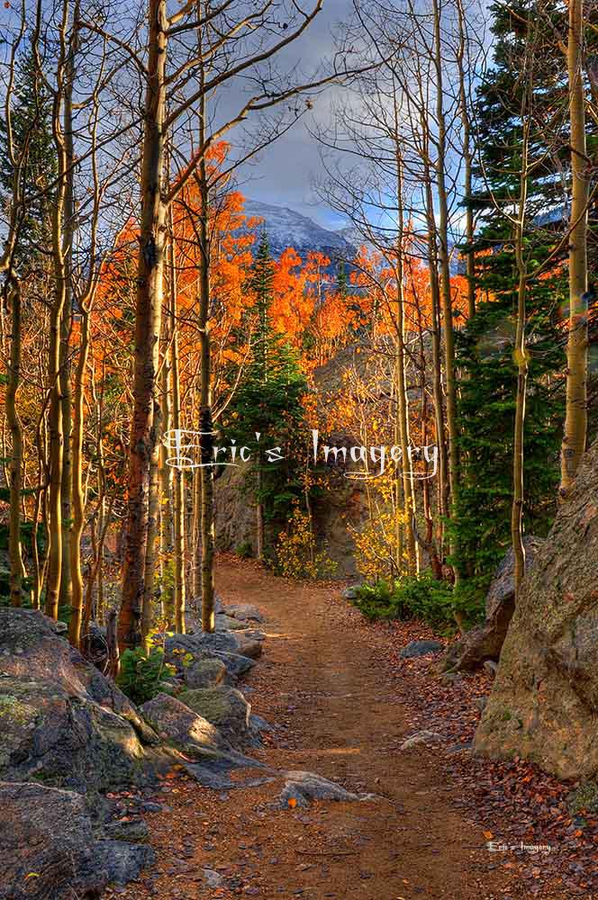 Rocky-Mountain-National-Park-Trail.jpg