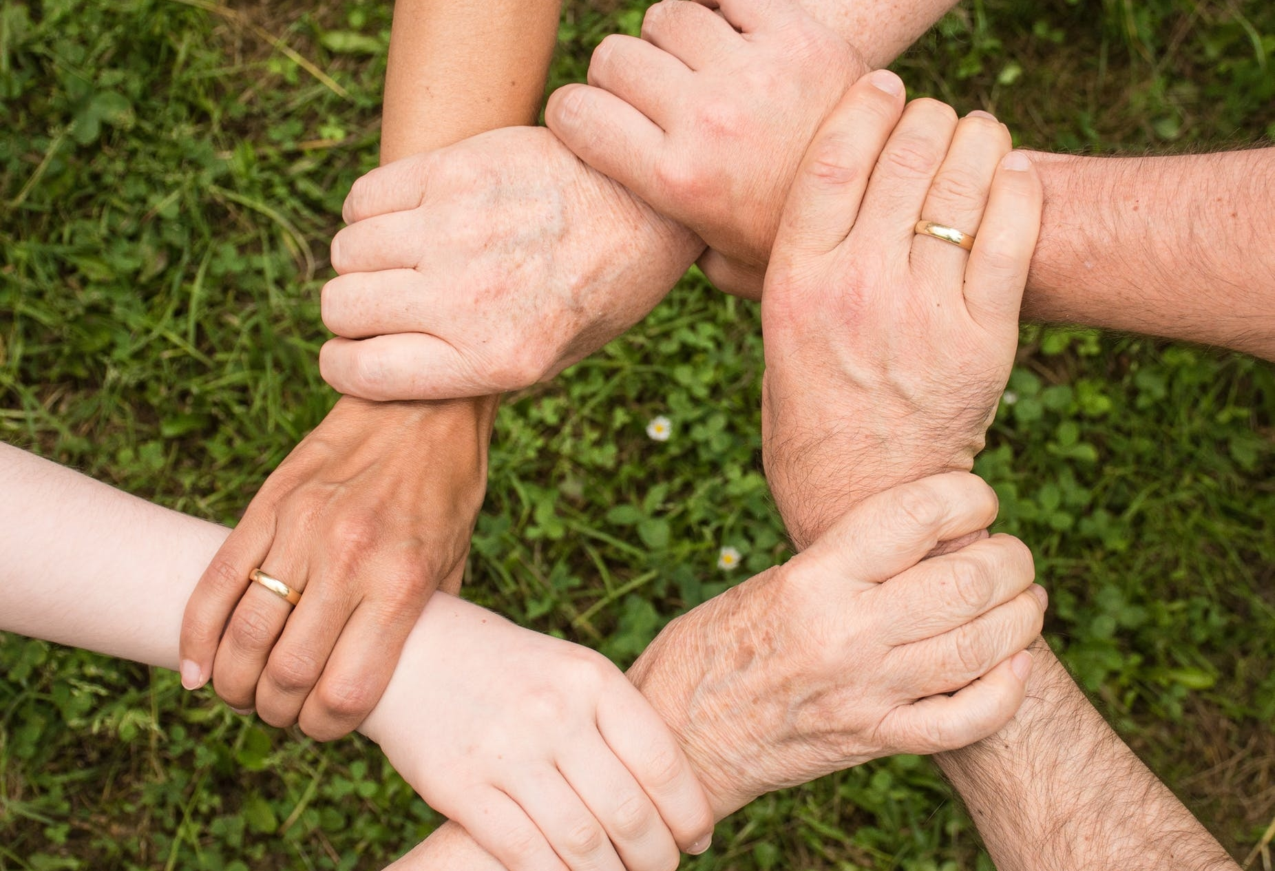 support groups and Psychotherapy -