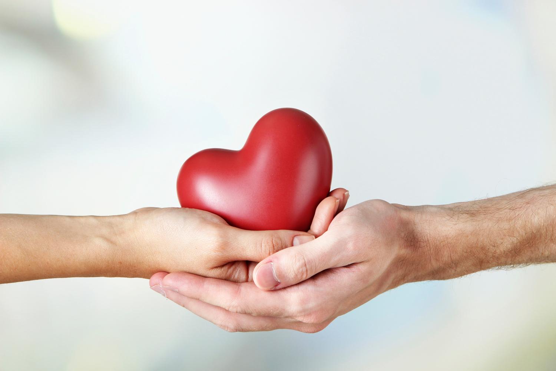 Organ donation -