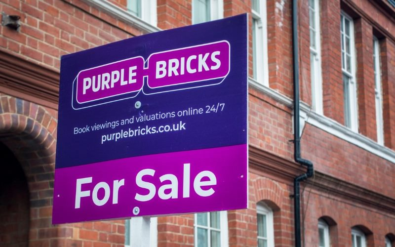 purplebrick.jpg