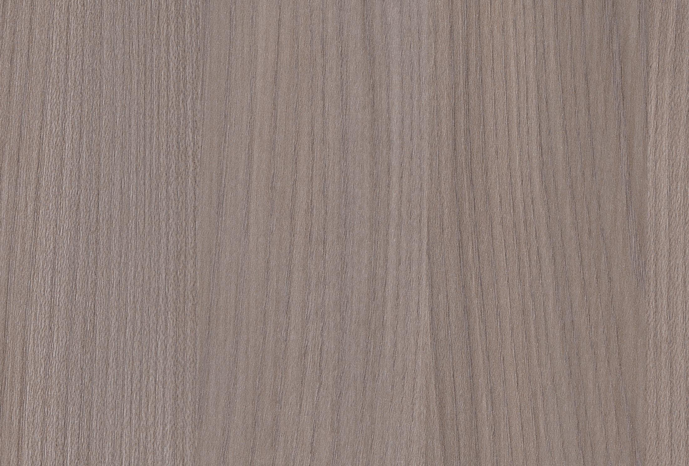 Silver Elm Vertical