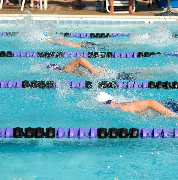 A-Meet Canterbury Woods C-Serpents 🐍 vs Fox Hunt Splash 💦 pics are up on our website! Just follow the link in our profile and make your way to Swim Team   Photo Galleries   2019⠀ ⠀ #foxhuntpool #fxsplash #swimfast #summerswim #nvsl