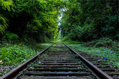 boss-fight-stock-images-photos-free-old-train-tracks-woods-moss-960x640
