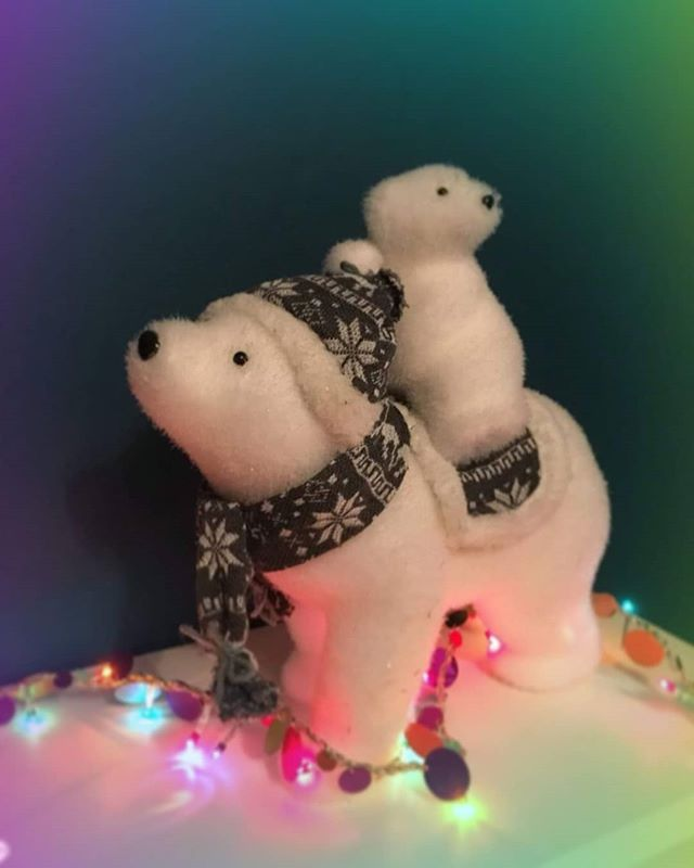 Happy December!  It's that time of year again and the Penarth polar bears have made an appearance here at Penarth Covers! Looks like they are already making themselves at home...🎄 #penarthcovers #coveringyourassets #december #christmasdecor #funneverends