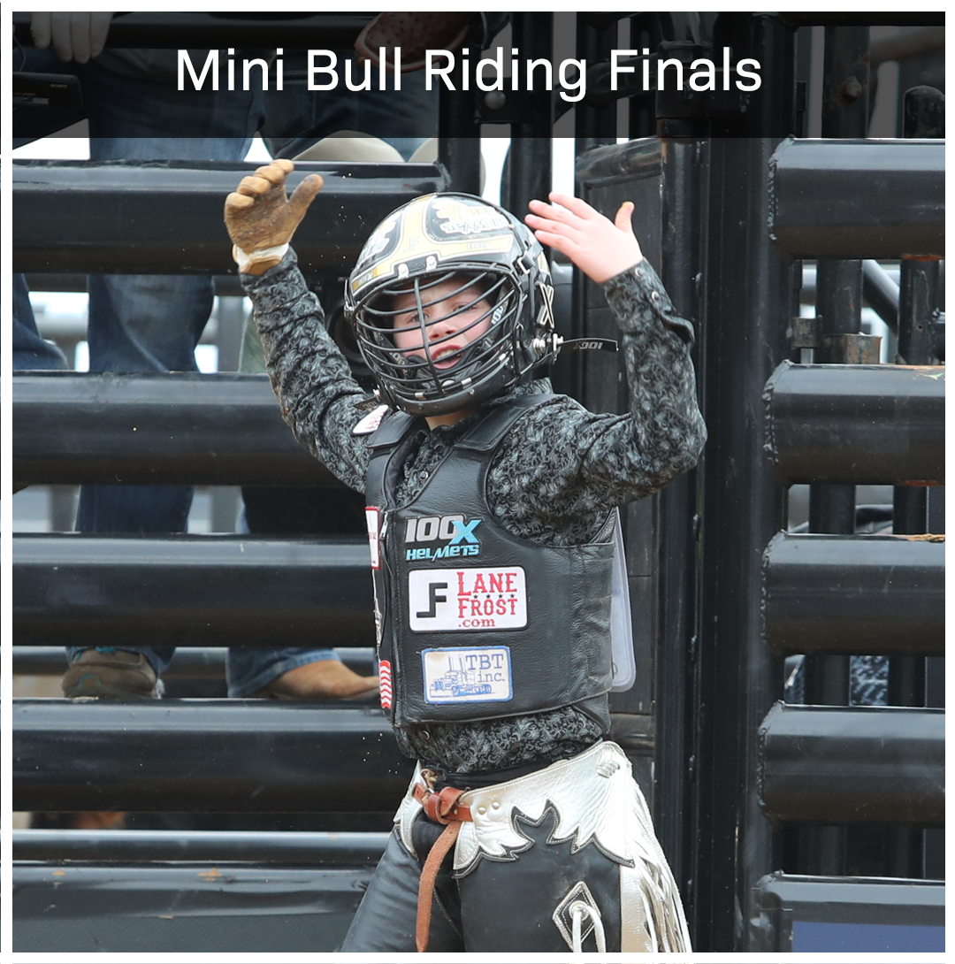 The Future of the PBR is here. Mini Bull Riders are ready to take on Vegas for a Gold Buckle.