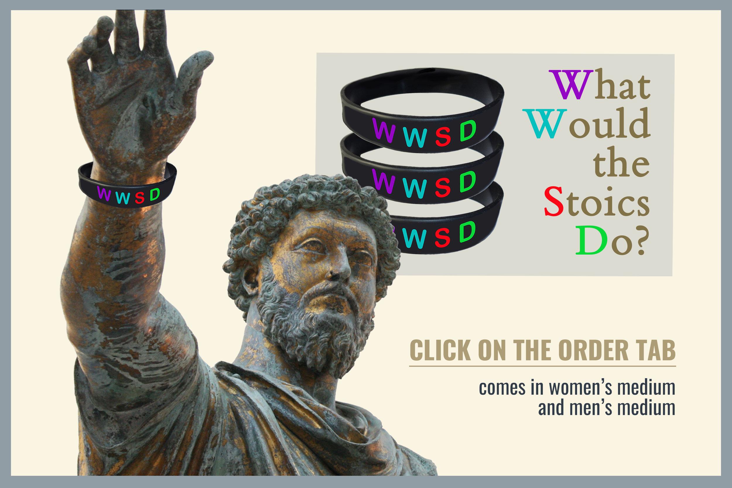 WWSD-website-edit.jpg