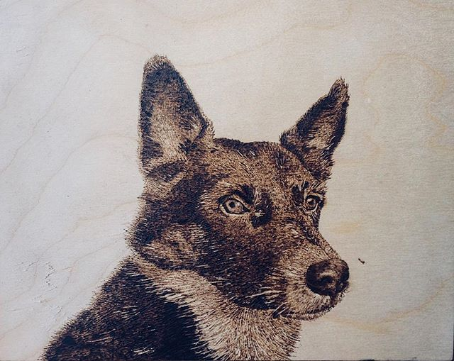 """""""Can you open your present so I can post it on Instagram?"""" First wood burning experience, first pet portrait ✍️🐺"""
