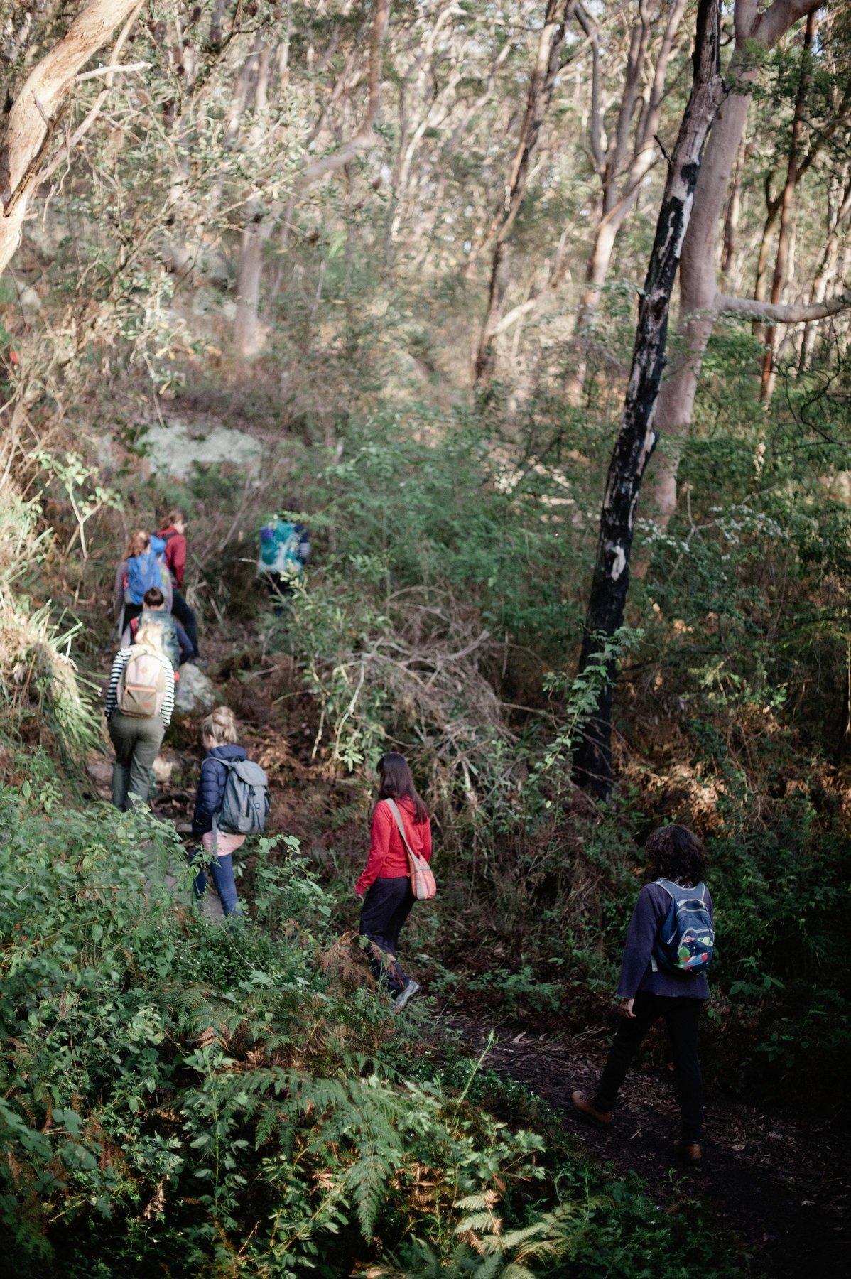 barefoot wellbeing - sydney australia - nature connect - mindfulness - movement - yoga - nature walksLouise Kiddell - FoM041.jpg