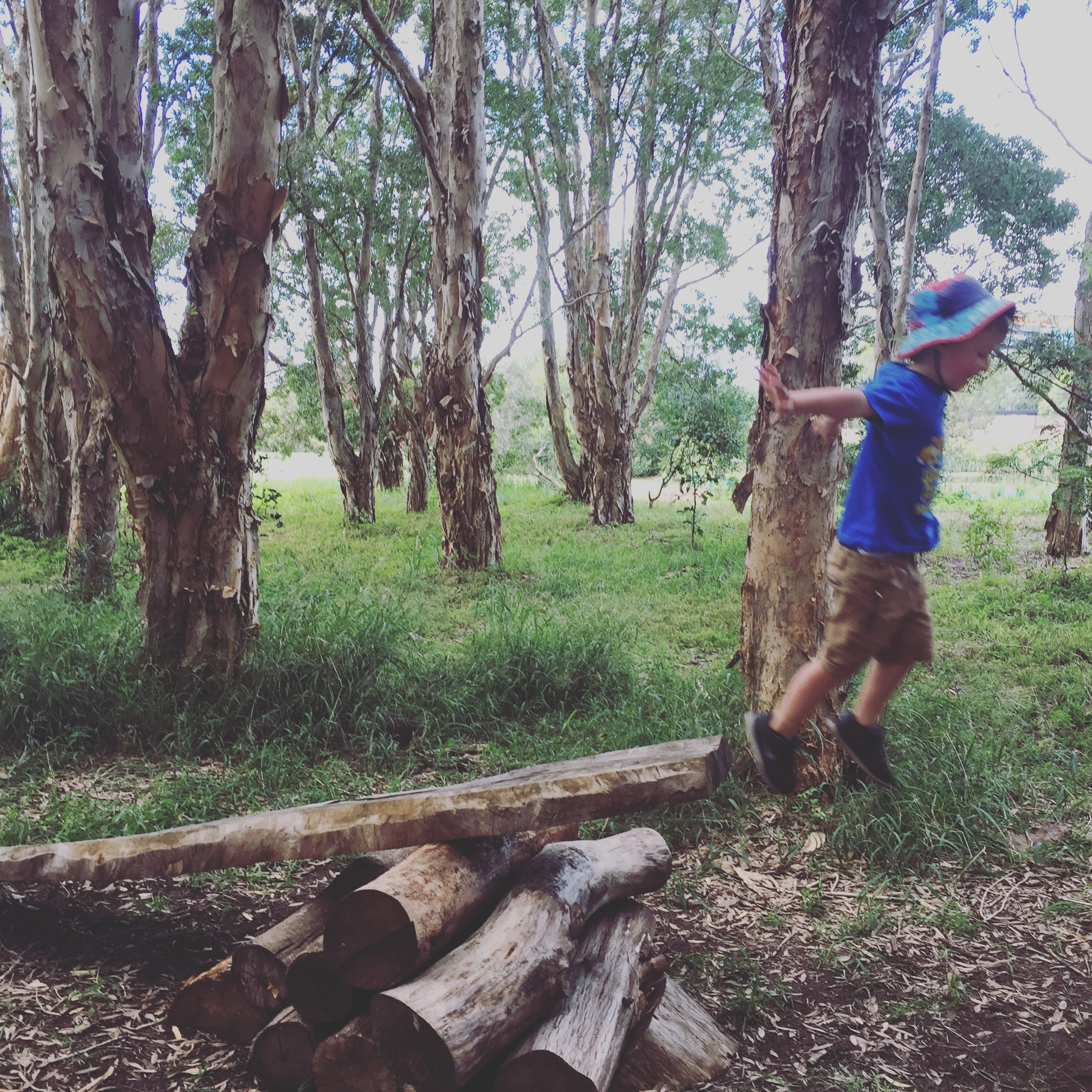 barefoot wellbeing - bush school - sydney australia - nature connect - mindfulness - movement - yoga - nature walks- Louise Kiddell .JPG