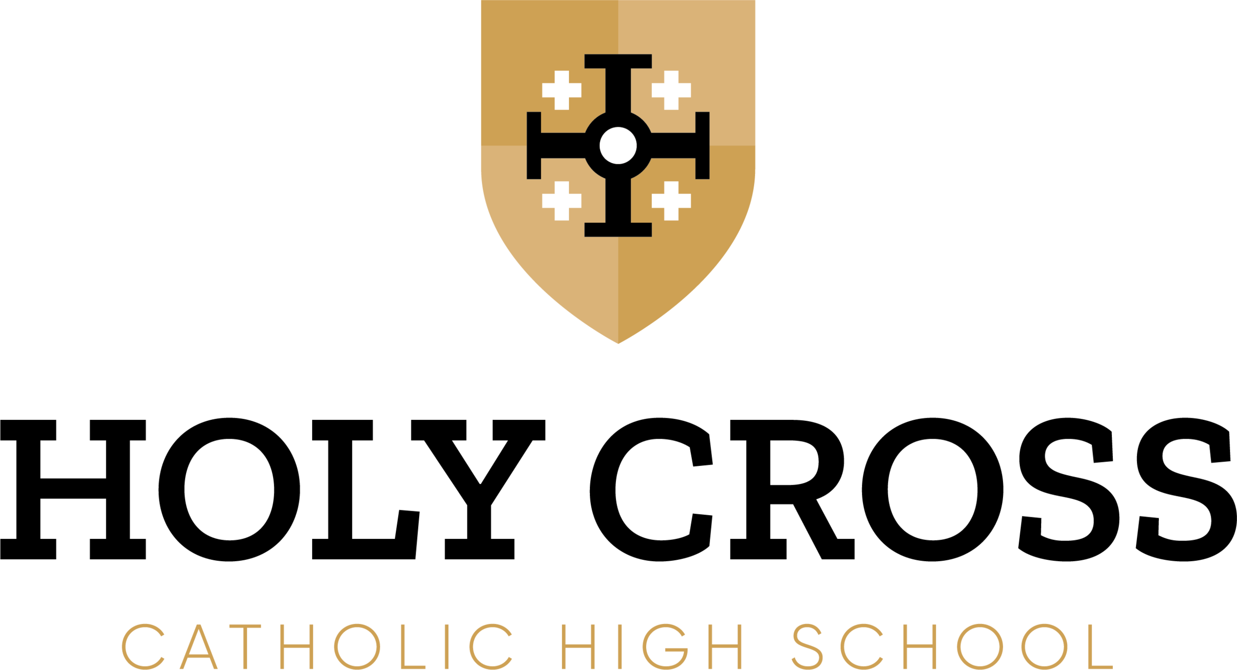 HCCHS Logo_Stacked.png