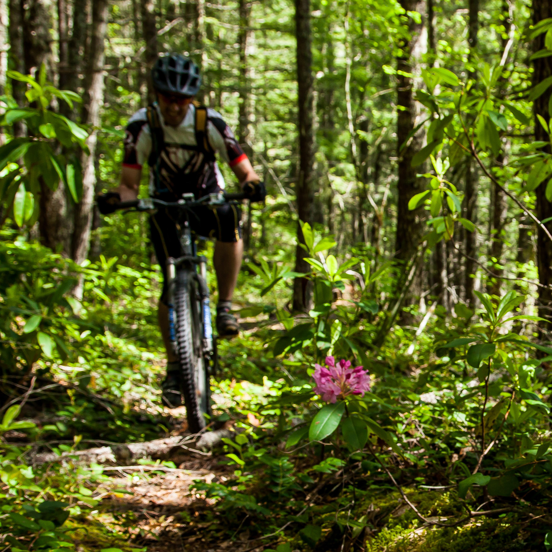 Office of Outdoor Recreation - PASSED