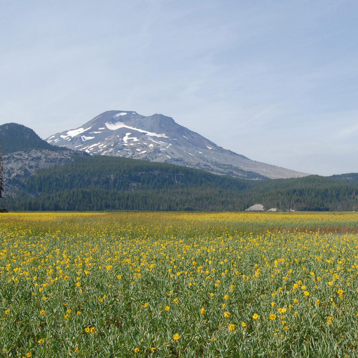 Central Oregon -