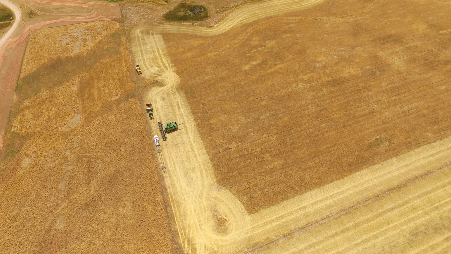0774---Harvest-from-Above---Russell-Menzies.jpg