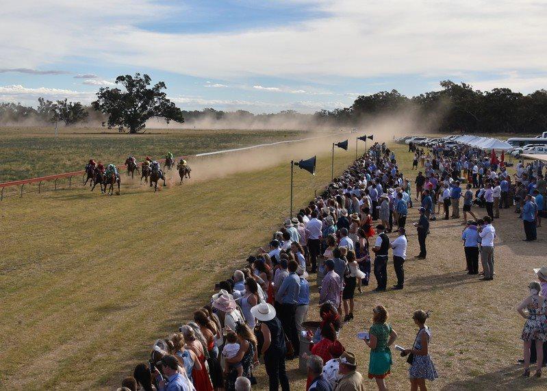 Ardlethan Picnic Races 2.jpg
