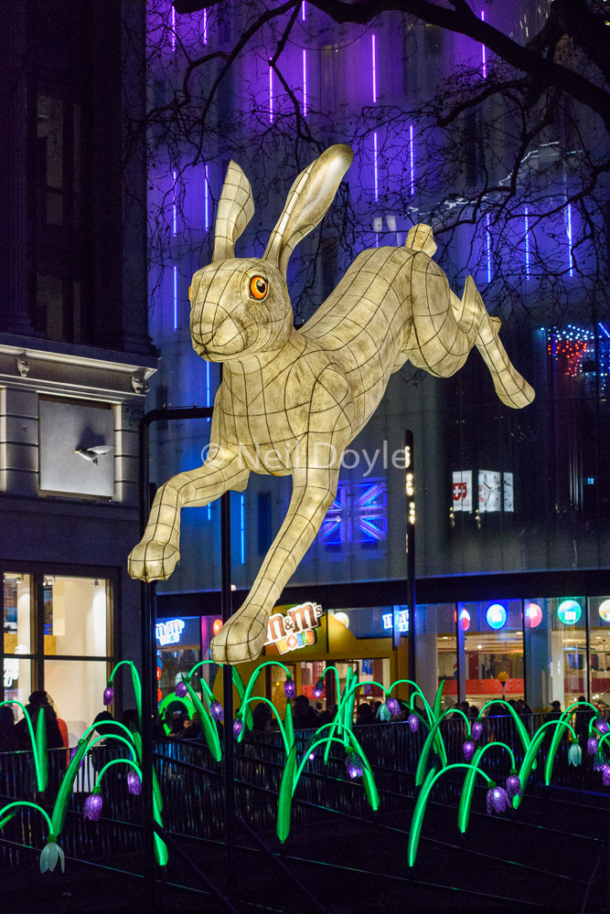 Hare on the Square