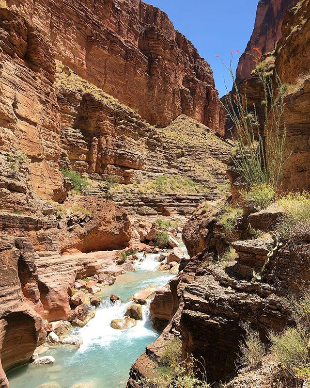 60+ miles in four days, to the country's most remote town, the colorado river, and back – with some waterfall and fry bread stops in between. pretty good for my first solo trek 😎  respect and thanks to the hualapai and havasupai for sharing their beautiful land!