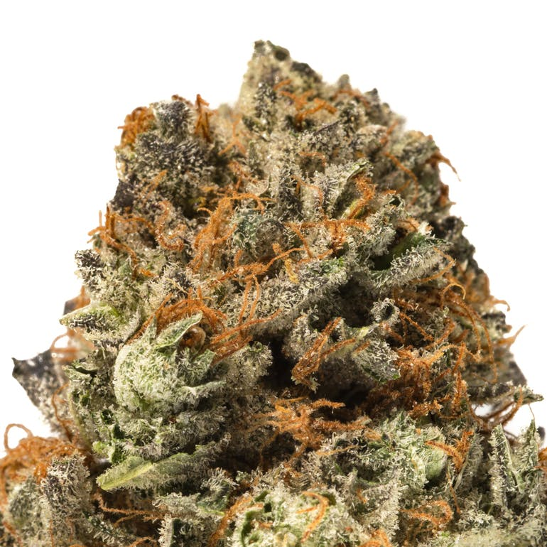 The Jack White flower from Heavenly Buds is also beautiful, and also selling for just $45 for an 1/8th of an ounce during the holidays.