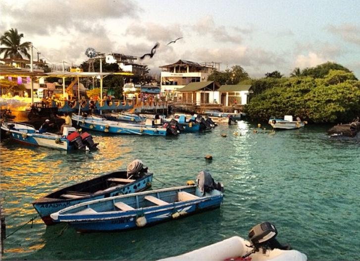 Puerto Ayora, Santa Cruz, Galápagos