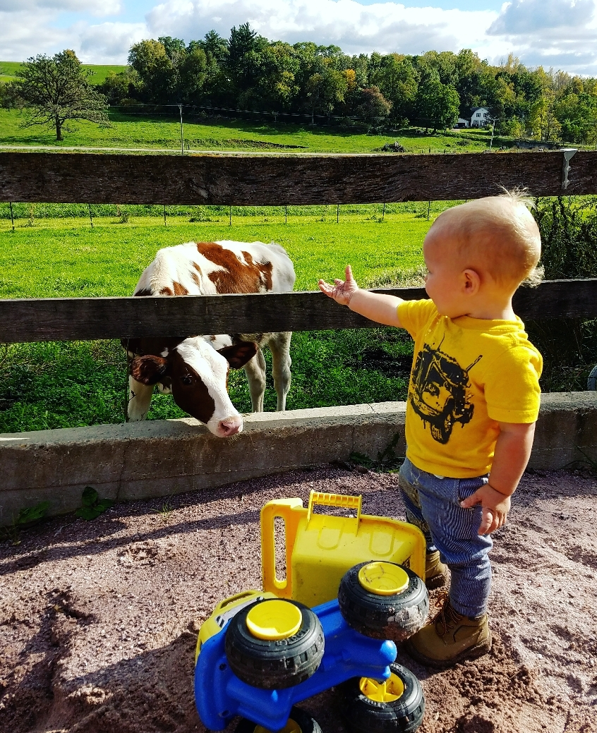 farmer&cow.jpg