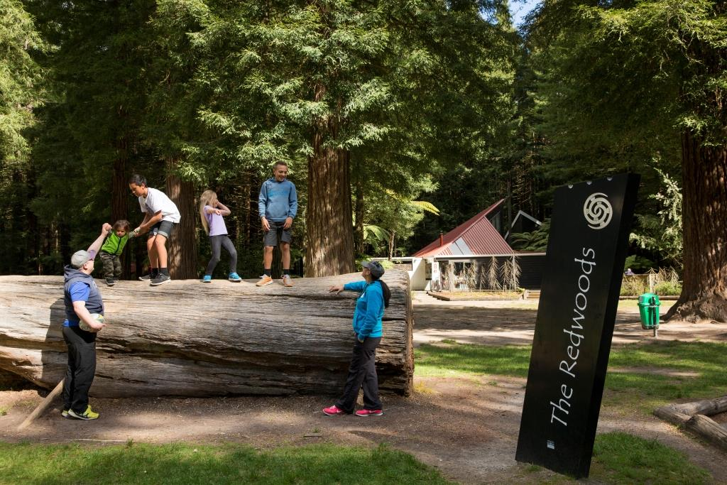 GM_Redwoods_FAMILY2-19.jpg