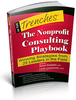 The Nonprofit Consulting Playbook: Winning Strategies from 25 Leaders in the Field edited by Susan Schaefer and Linda Lysakowski