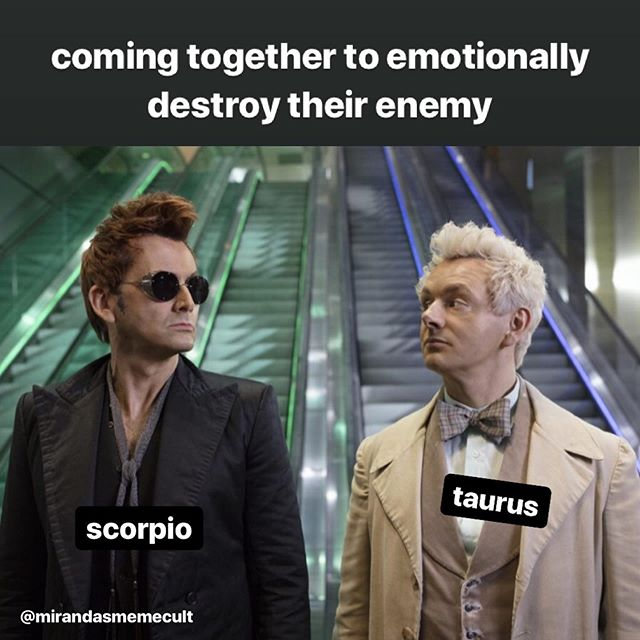 sister signs, @goodomensprime edition 💀