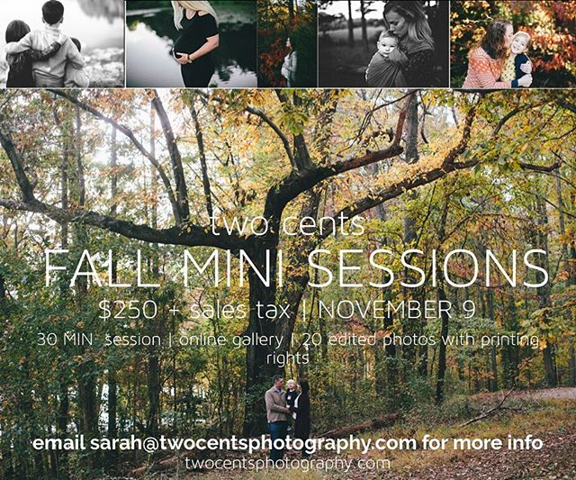 This is my last minute, hard to read mini session announcement!! Ha. We still have some spots open for Nov 9th! Shoot me an email for more info!
