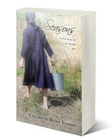 Seasons: A Real Story of an Amish Girl - EXCERPT: