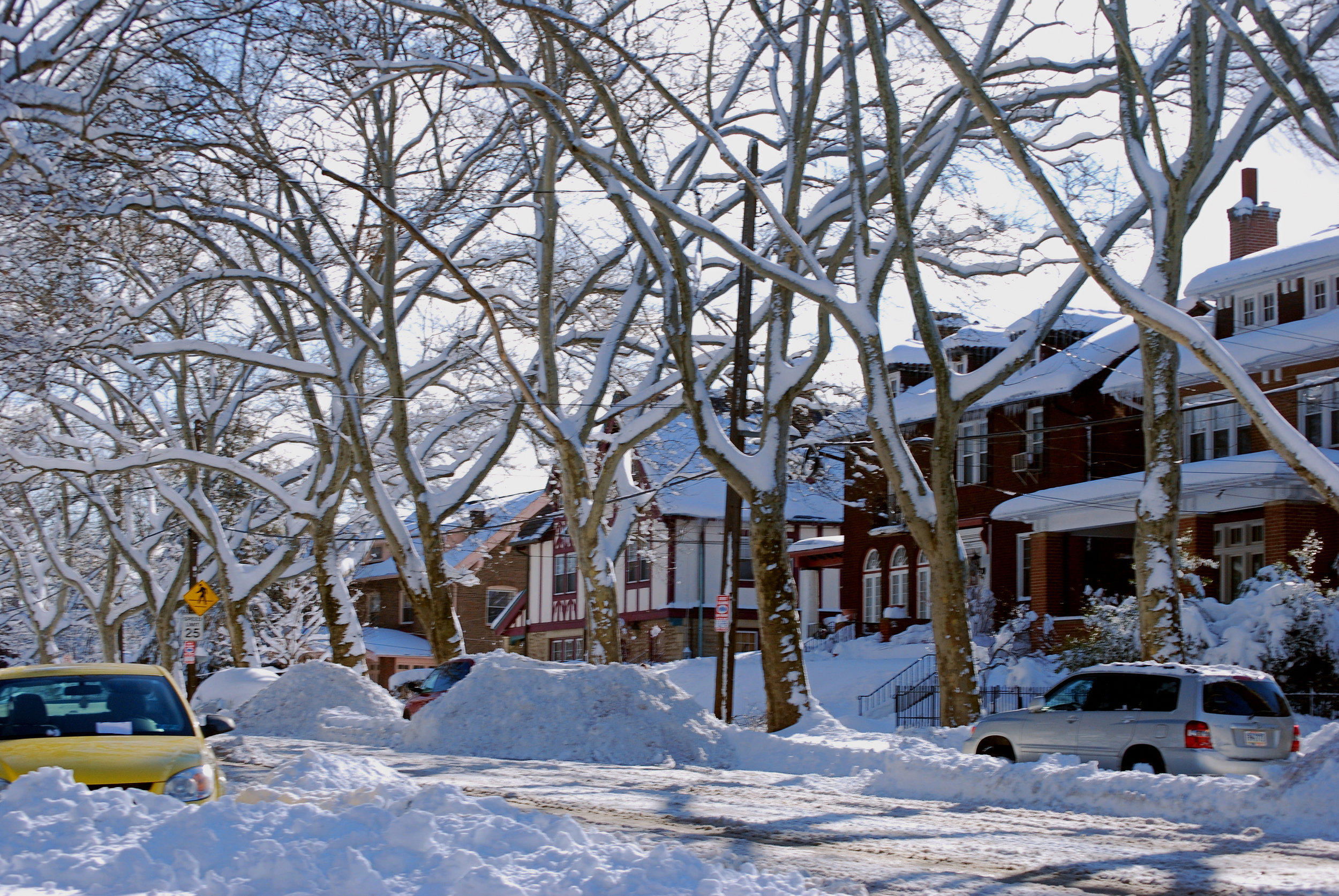 February 8, 2010: Blizzard in Pittsburgh. Photo by Christopher Rice, (CSC_0146) [CC BY-SA 2.0 (https://creativecommons.org/licenses/by-sa/2.0)], via Wikimedia Commons