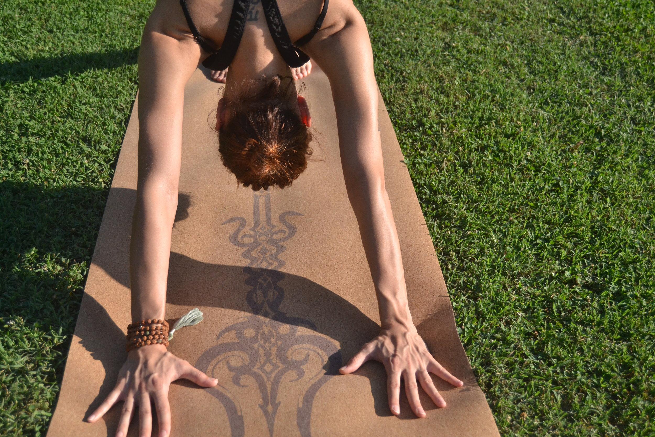 Yoga Vinyasa Soft.JPG