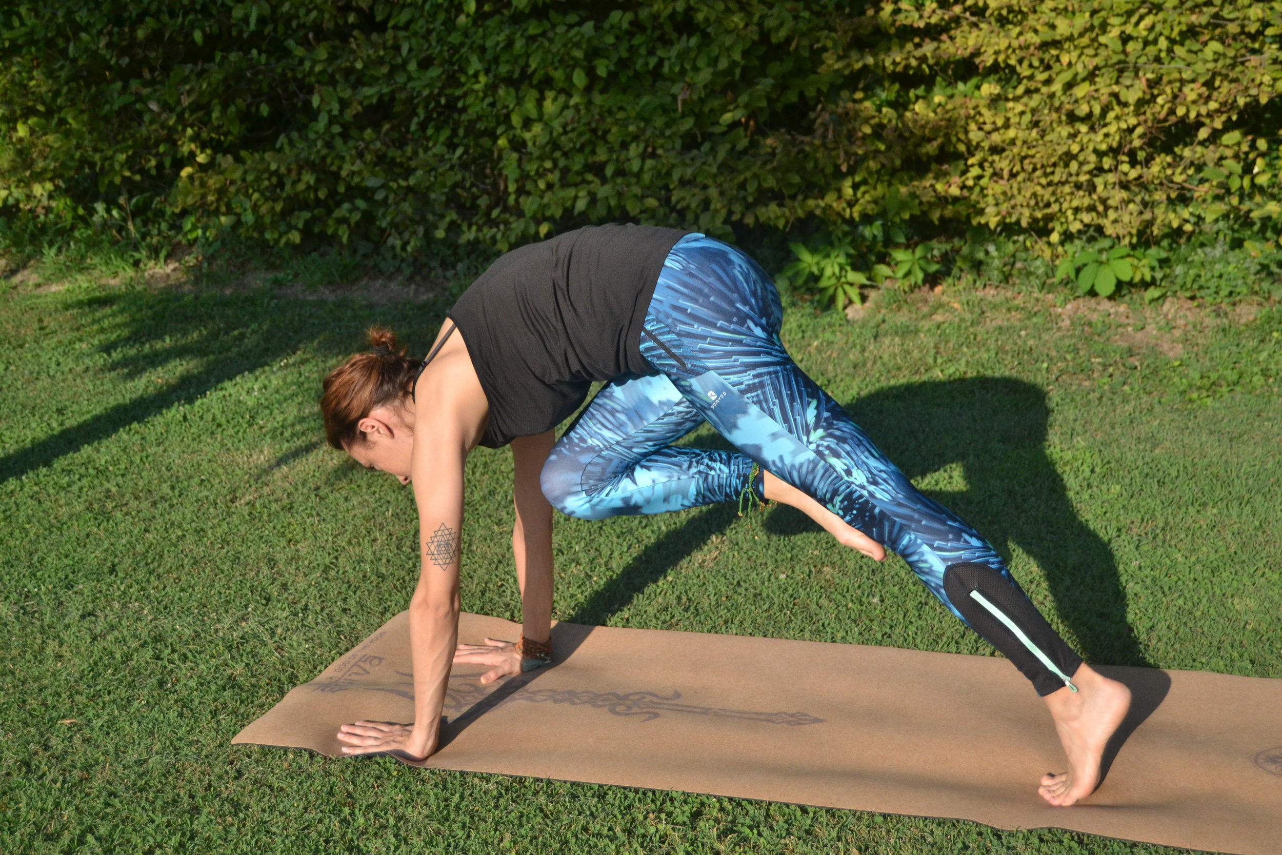 Yoga Vinyasa Dinamico.JPG