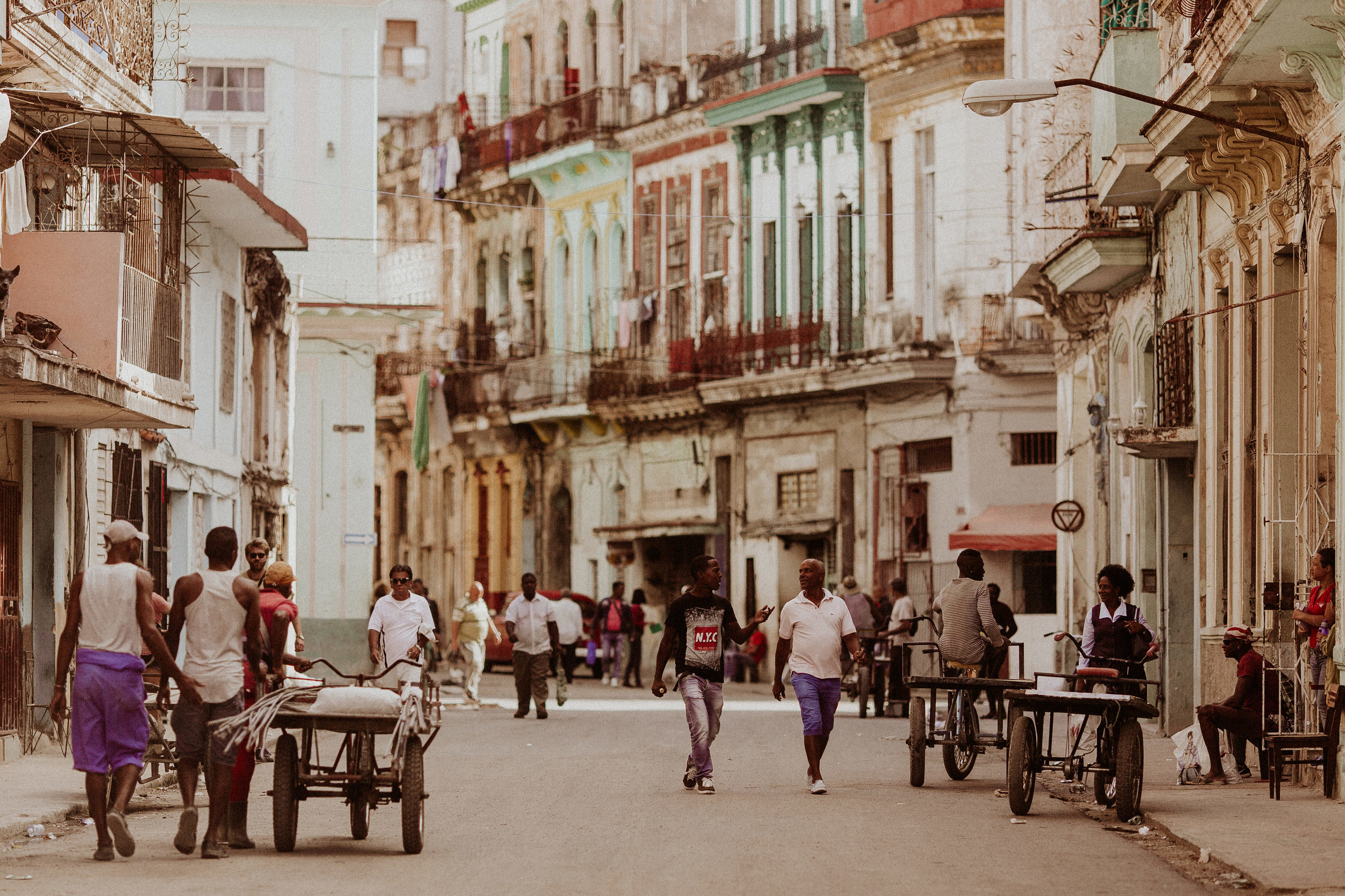 La Havana_Pinewood_00005.jpg