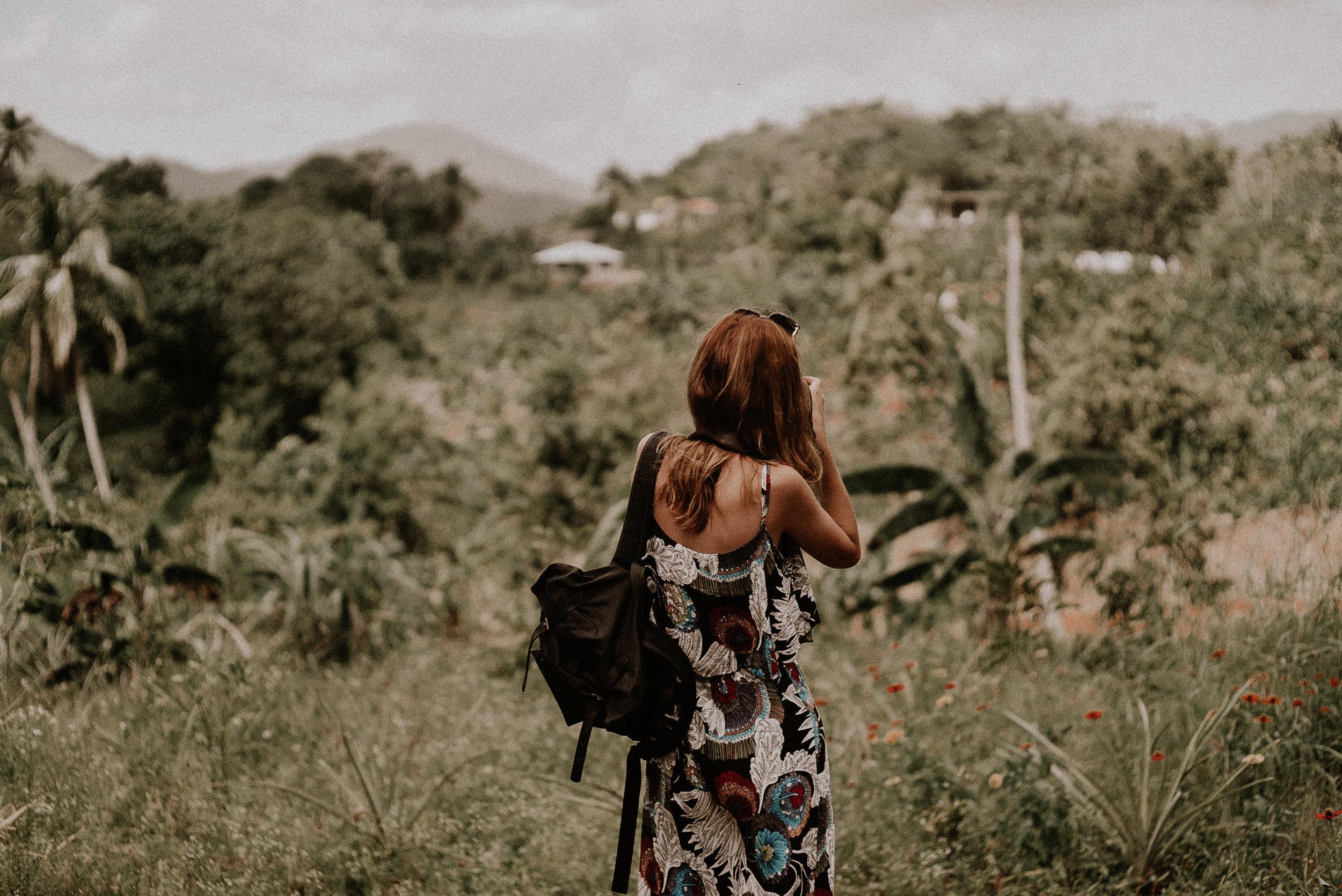 Dominican Rep_Pinewood_00001.jpg