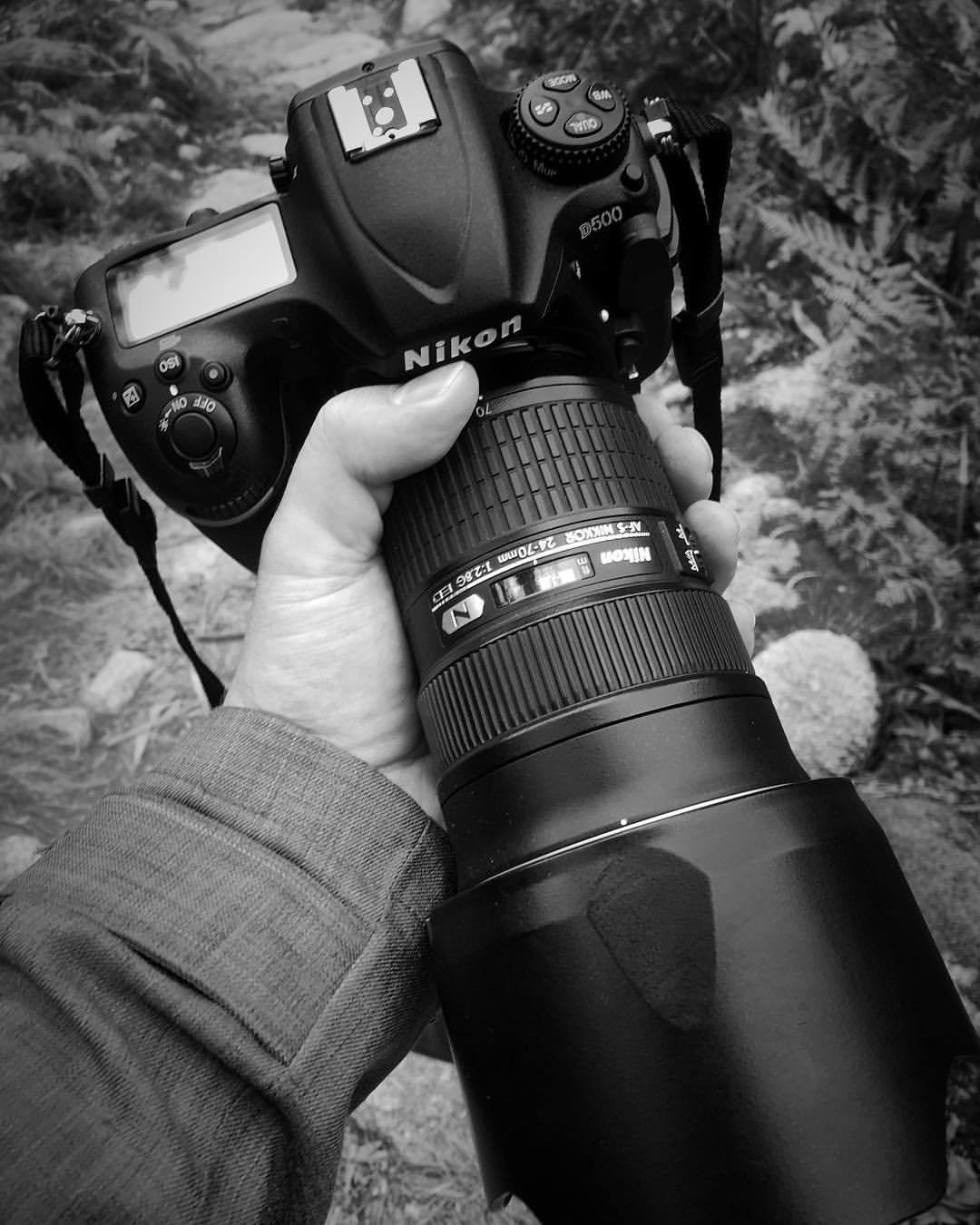 "FIRST IMPRESSIONS = ""Daa-amn!""    #Nikon #D500 is an absolute nonstop monster. Super quick autofocus, rips through frames and a HUGE buffer.     Almost, folks … almost."