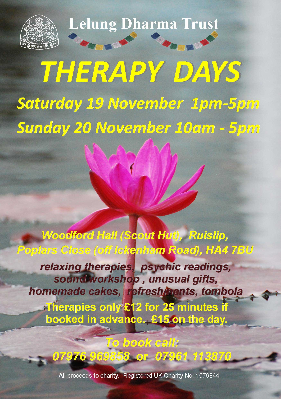 Therapy-Day-Nov-2016-lotus-(1).jpg