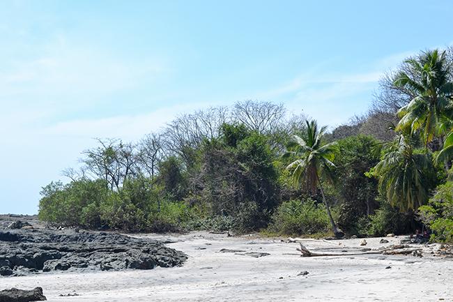 Montezuma, Costa Rica © Anne van Midden