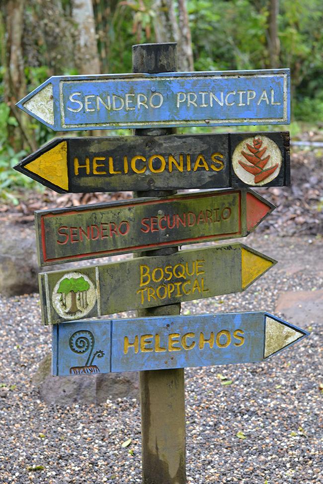 lankester botanical garden, costa rica // inspire styling