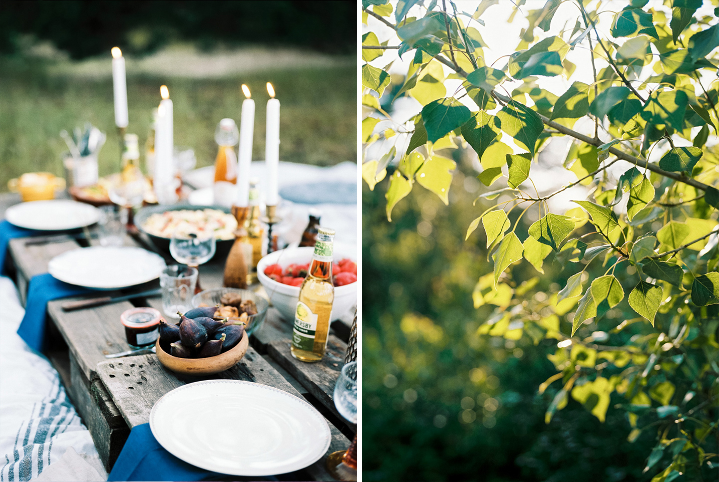 forest-picnic-with-friends-inspire-styling-hanke-arkenbout-photography-78a.jpg