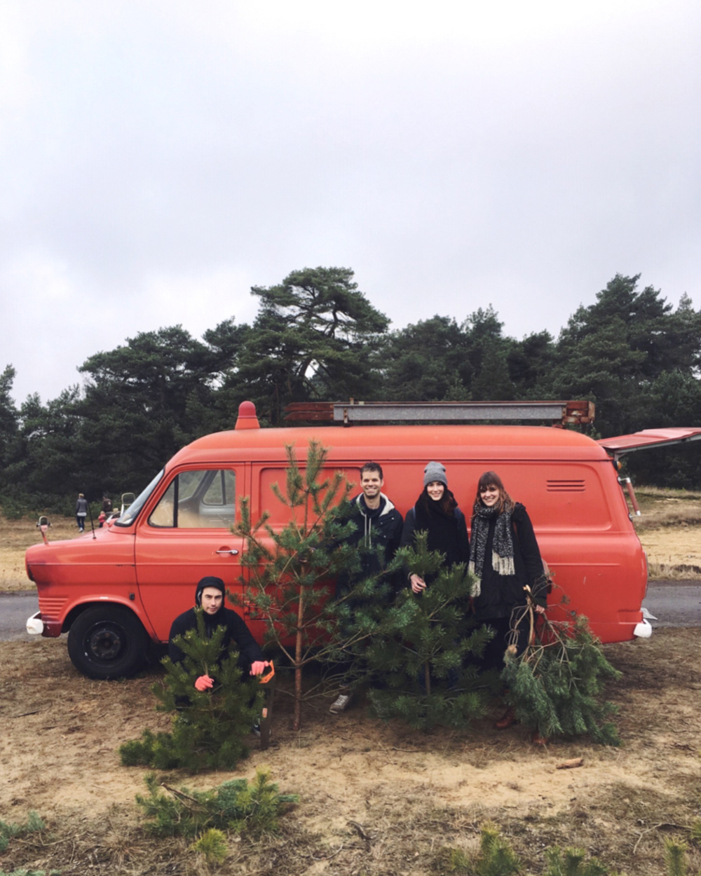 chopping a christmas tree / inspire styling