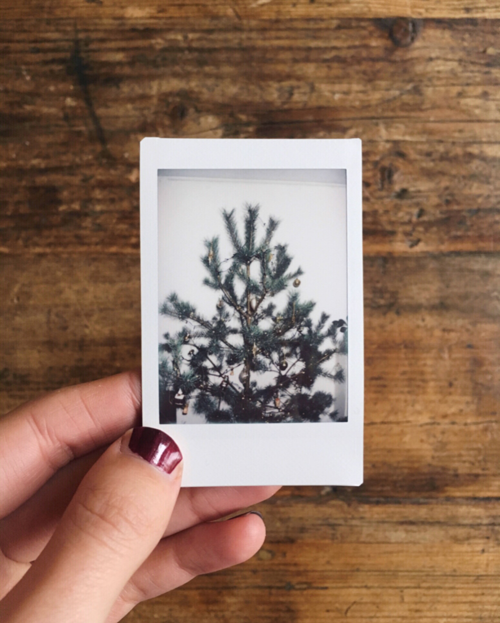 christmas tree / inspire styling