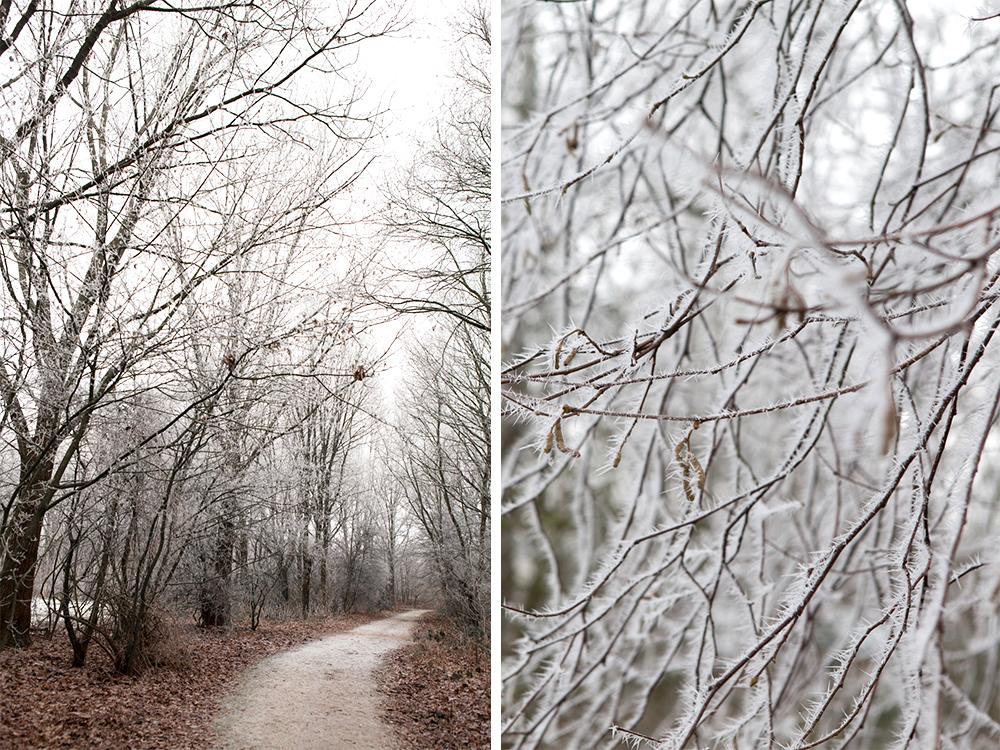 winter-scenes-inspire-styling-18b.jpg
