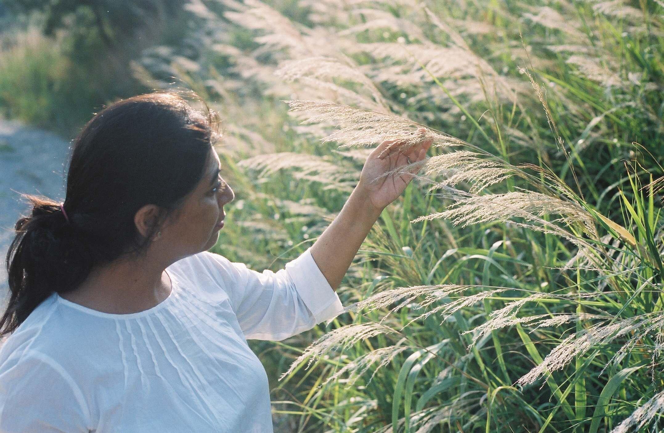 ponderosa and thyme clarity retreat - anne van midden