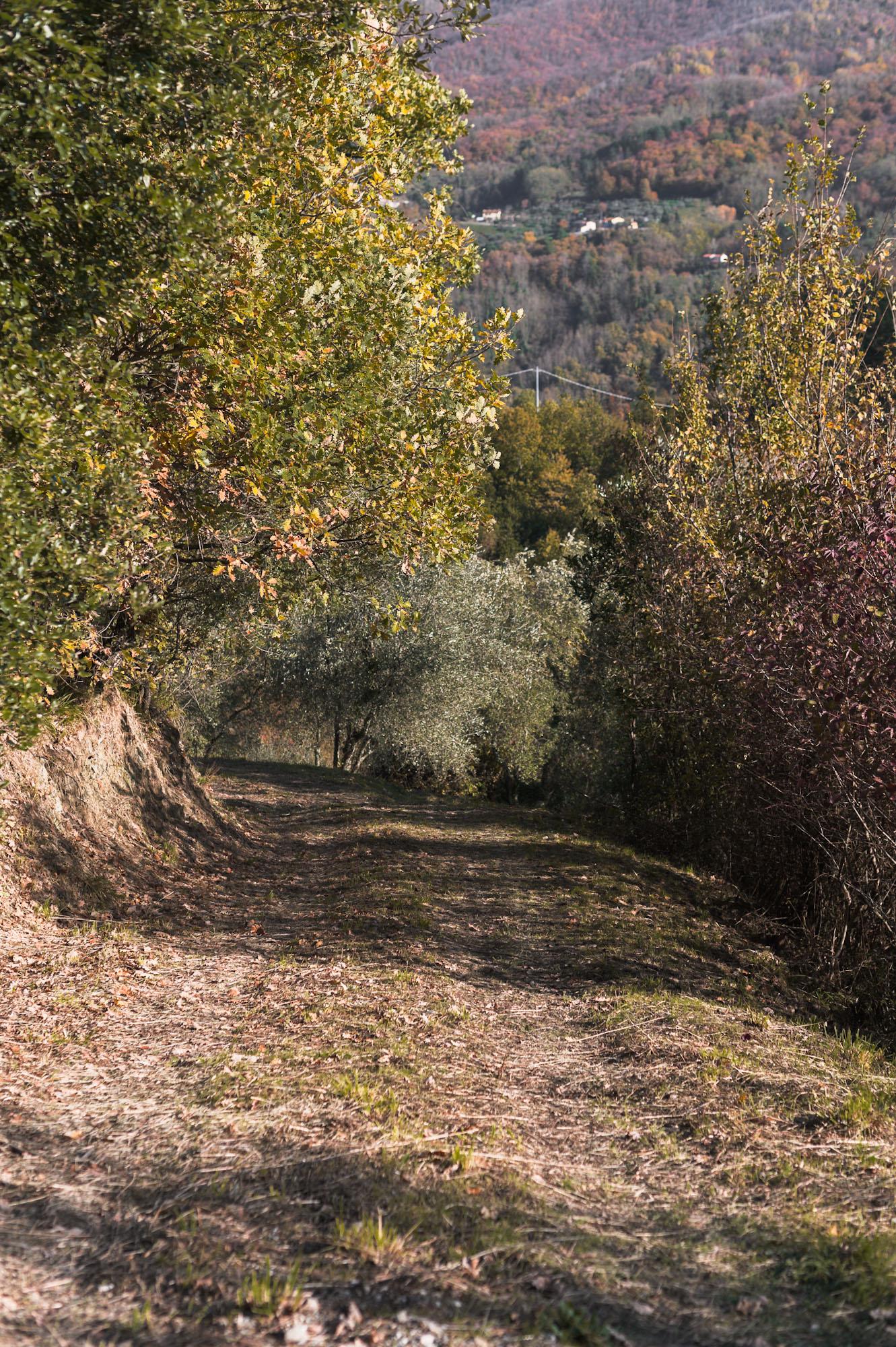 tuscany-19.jpg