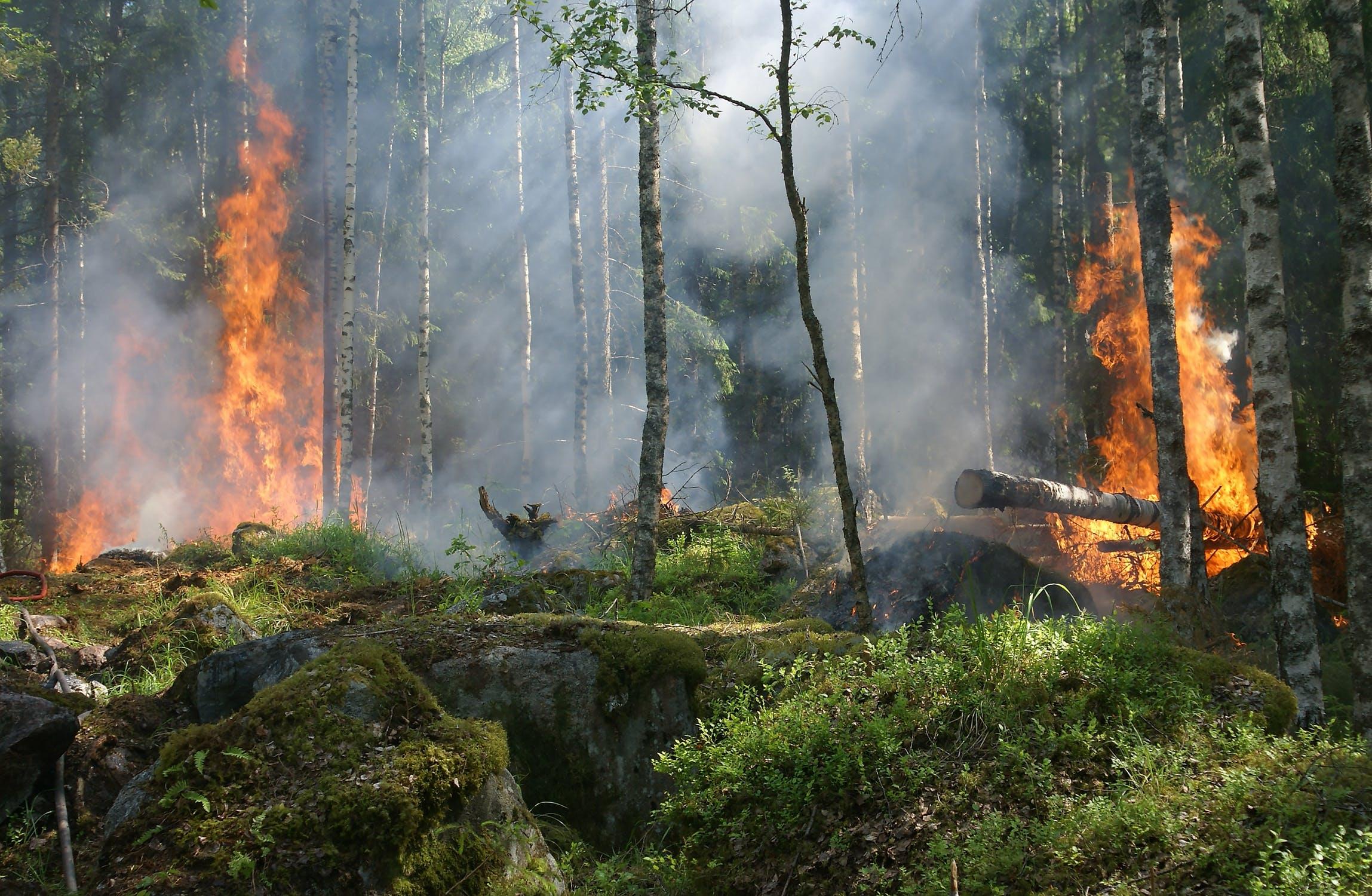 C'est le dernier jour pour respecter les lois de protection des incendies