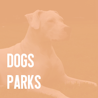 dogs parks.png