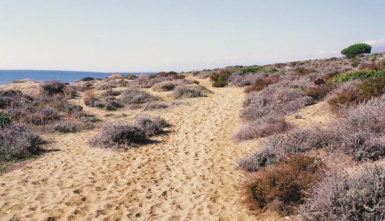 Playa de Cabo Pino est une superbe plage nudiste en Espagne