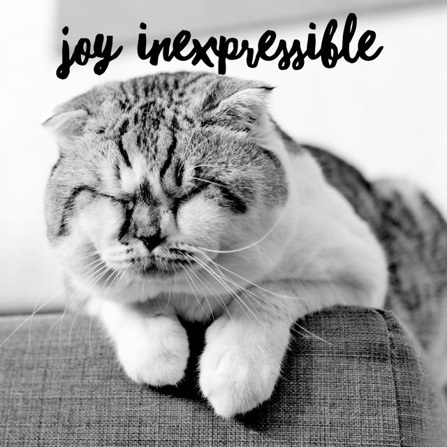 JoyInexpressible.PNG