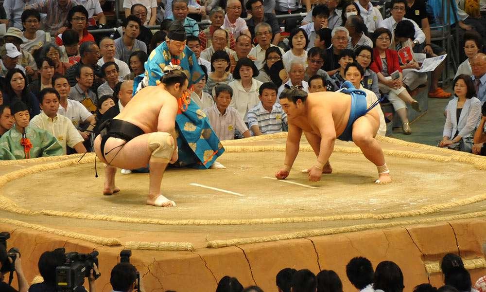 1312_sumo_main.jpg